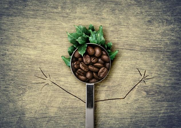 Кофе с брокколи: ученые создают новый способ съесть больше зелени